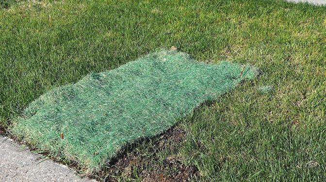 grass seed netting