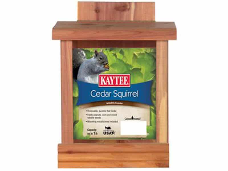 Kaytee cedar squirrel feeder